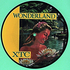 #\#i#/#Wonderland#\#/i#/# picture disc obverse