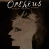 #\#i#/#Orpheus - The Lowdown#\#/i#/#